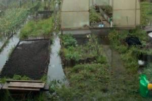 В Клинцах чиновников заставили отремонтировать канализационный коллектор