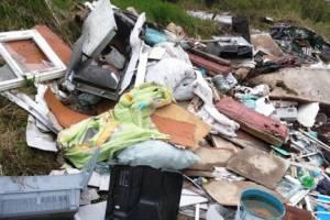 В Рогнединском районе нашли несанкционированные свалки