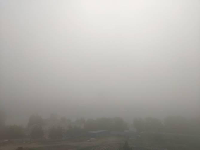 Брянск рано утром накрыло сильным туманом