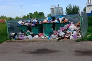 В Трубчевске контейнерная площадка утонула в мусоре