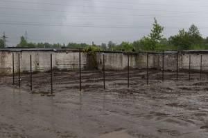 В Брянске завершается ремонт приюта для бездомных животных