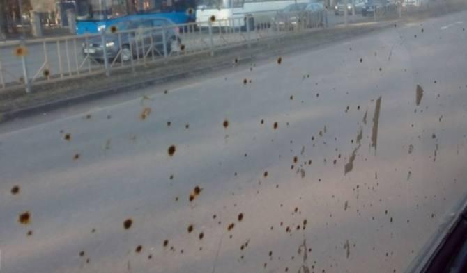 В Брянске пожаловались на грязные стекла троллейбусов