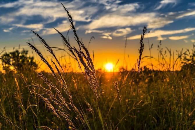 В четверг в Брянской области потеплеет до +27