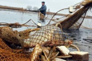 Двух брянских браконьеров осудили на миллион за рыбку в сетях