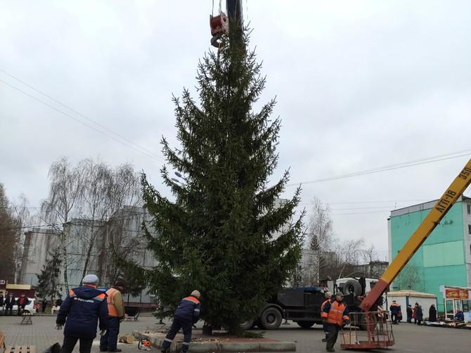 В Брянске установили елку в 10-м микрорайоне