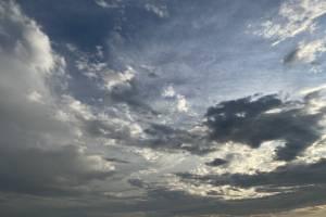 На Брянщине в четверг обещают небольшой дождь