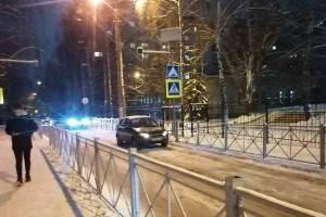 В Брянске автоледи перекрыла пешеходный переход возле гимназии №6