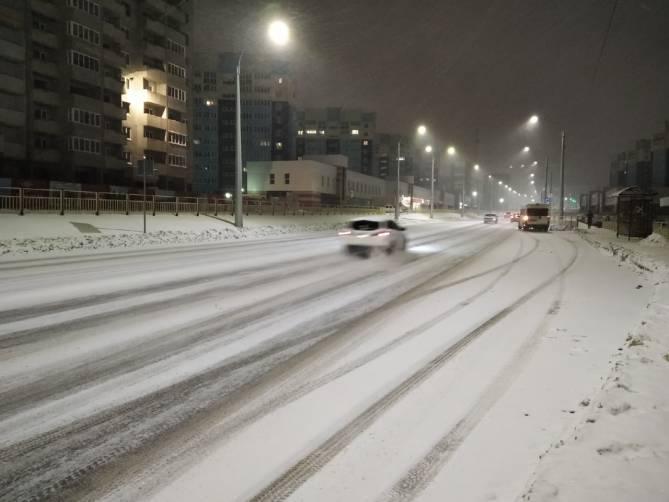 На Брянск обрушилась сильная метель