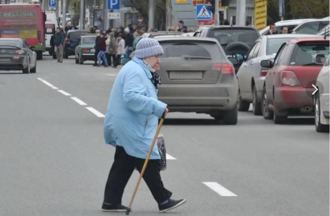 Брянская полиция решила выяснить повадки пешеходов