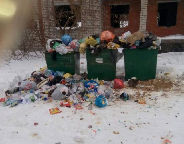 Жители Клинцов пожаловались на мусорный коллапс