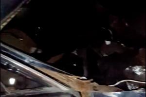 Опубликовано видео с места страшной аварии под Дятьково