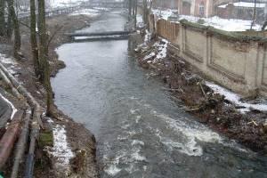 В Клинцах в реку Московка начала стекать канализация