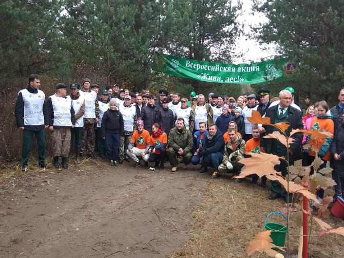 В брянском поселке Малое Полпино высадили 2000 сосен