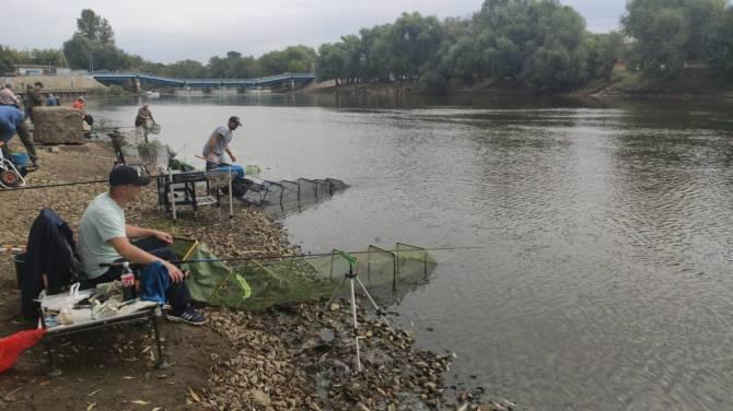 В Брянске на соревнованиях поймали рыбу весом 485 граммов