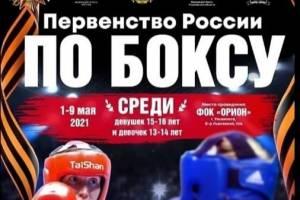 Брянская спортсменка выступит на всероссийских соревнованиях по боксу