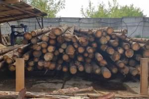 В Выгоничском районе нашли пожароопасные пилорамы