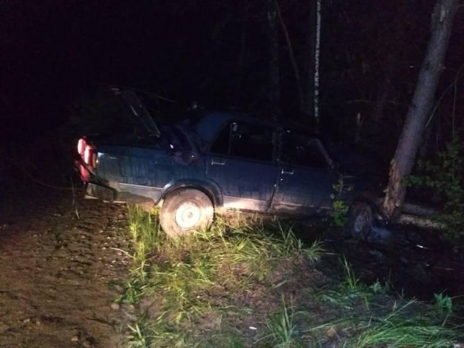 Под Погаром пьяный водитель врезался в дерево: ранены двое