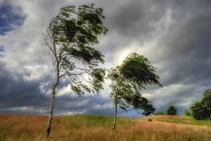 Брянцев предупредили об ухудшении погодных условий