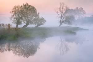 В воскресенье Брянскую область окутает туман