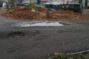 В Брянске коммунальщики завали гнилой листвой тротуары