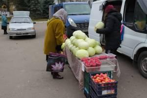 На ярмарке выходного дня брянцы раскупили 15 тонн капусты