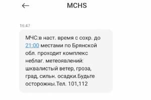 МЧС предупредило брянцев об урагане с градом через SMS