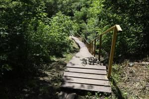 В Брянске отремонтируют лестницу за кардиологическим диспансером