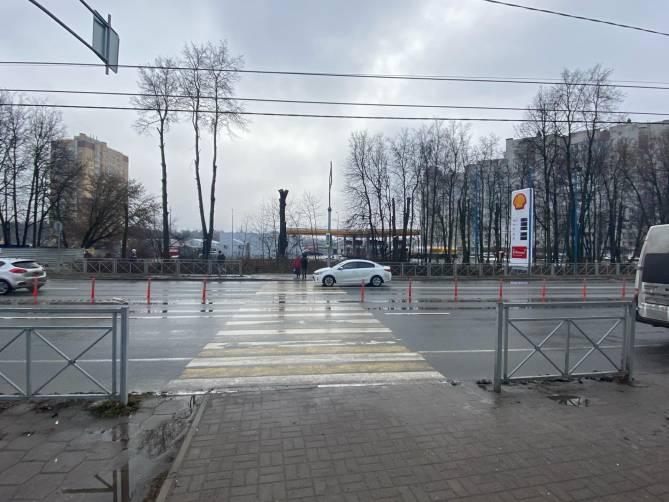 В Брянске варварски обкромсали деревья на выезде из города