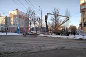 В Брянске тотально кронировали дерево на перекрестке Авиационной и Пилотов
