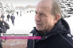 Главным тренером брянского «Динамо» назначат Евгения Перевертайло