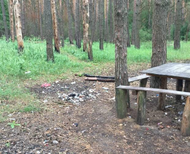 В Погаре отдыхающие развели свинарник в лесу