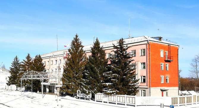В Новозыбкове разгорелся скандал вокруг спила елок у администрации