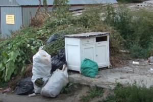 В Брянске управляющие компании подбрасывают мусор к контейнерам