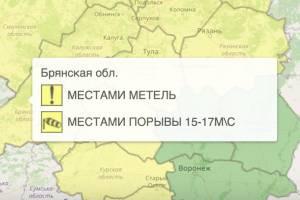 В Брянске из-за метели объявили желтый уровень опасности