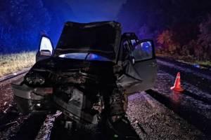 Брянского водителя осудят за смерть отца с ребёнком из Калуги