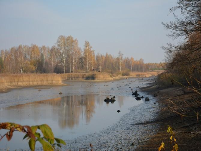 Озеро под Новозыбковом оказалось на грани исчезновения