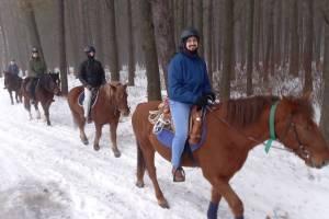 Как развлечься на коронавирусных новогодних каникулах: конные прогулки в Брянске