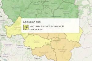На Брянщине желтый уровень опасности продлили до вечера 24 августа