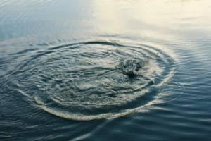 Под Навлей в Десне утонул 45-летний мужчина