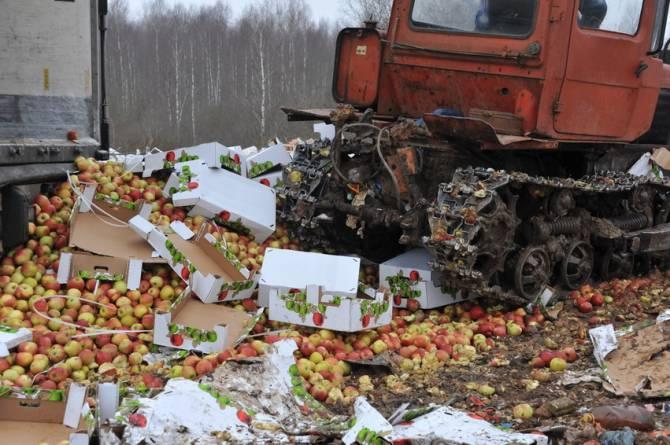 В Унечском районе уничтожили больше 35 тонн клубники и яблок