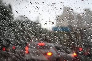 Брянцам предсказали дождливый май