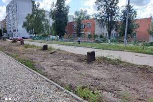 Жителей Брянска шокировала вырубка тенистой аллеи по улице Медведева