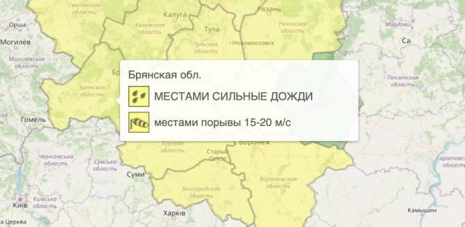 В Брянской области из-за ветра объявили жёлтый уровень опасности