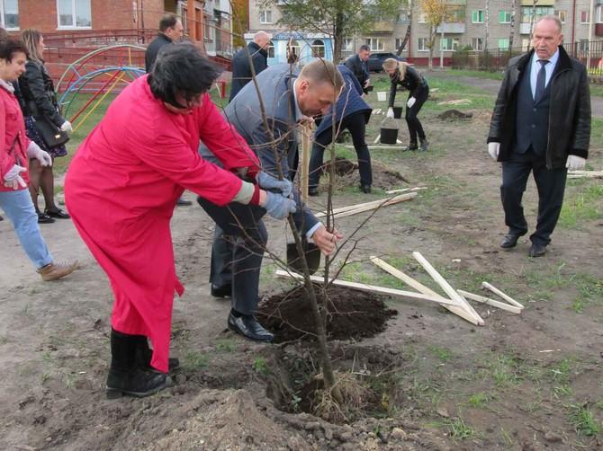 В Брянске детскому саду «Деснянские звездочки»  на День учителя подарили деревья
