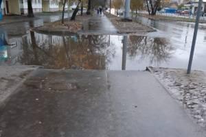 В Брянске пешеходов на улице 22 съезда толкнули в лужу
