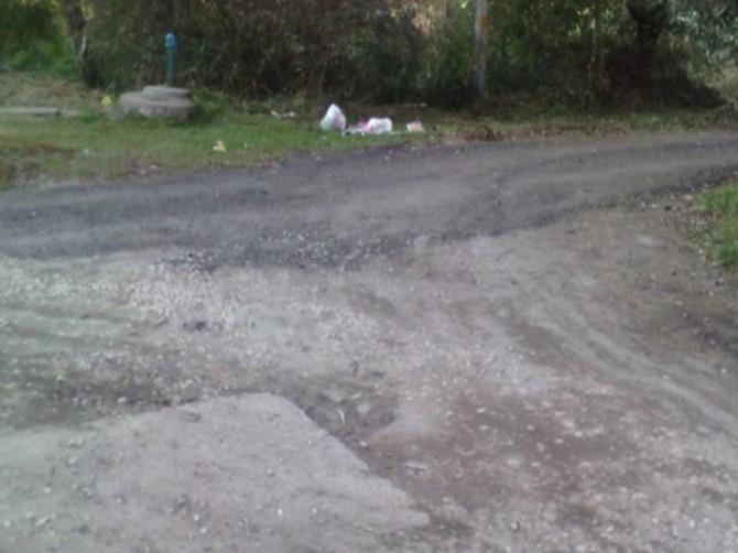 Жительница Брянска пожаловалась на уличную свалку мусора