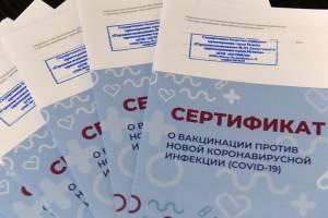 Брянские врачи выдали более 100 поддельных справок о вакцинации