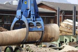 В Брянской области украли строение пилорамы