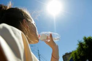 Брянцам в пятницу обещают 29-градусную жару