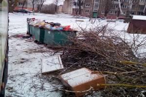 Брянские контейнерные площадки завалили спиленными ветками